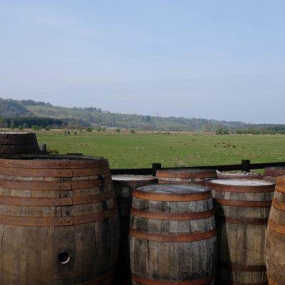 Whiskey Barrels at Glengoyne Distillery